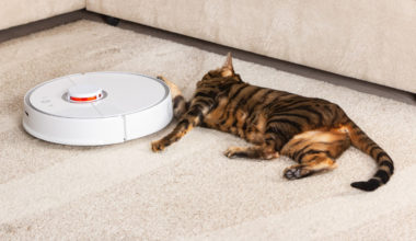 Best Robot Vacuums for Pethair