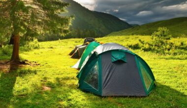 Tents set up in green surroundings with mountains in the background