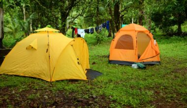 Yellow and orange tents set up in a green forest
